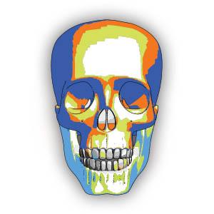 Colorfull Human Skull Free Vector download