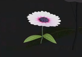 Modeling a flower in 3Ds Max
