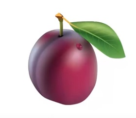 Detailed Plum with Mesh Tool in Illustrator