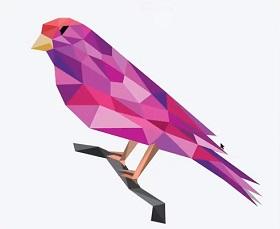 Create Bird Logo Design in Adobe Illustrator