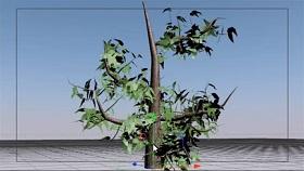 Growing a Tree using Hair in Cinema 4D