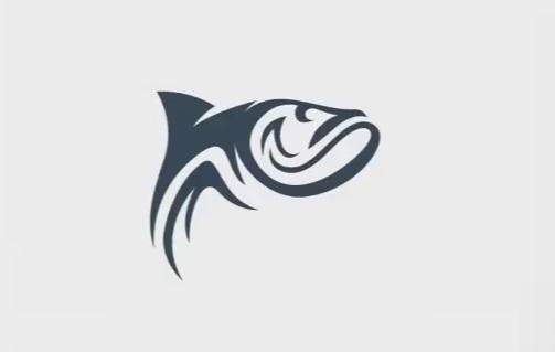 Draw a Salmon Logo in Illustrator