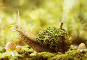 Create a Fantasy Snail House with Photoshop
