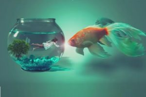 Create a Girl in Fish Bowl with Photoshop Manipulation