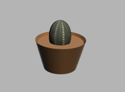 Modelling Ornamental Cactus in 3ds Max
