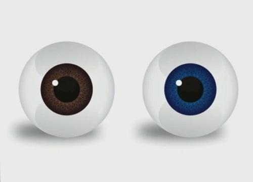 Draw a Real Eye Ball Vector in CorelDRAW