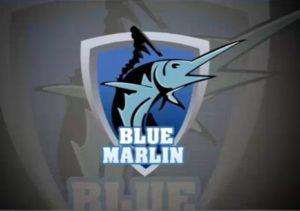 Draw a Logo Design Fish in Adobe Photoshop