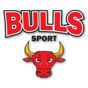 Vector Bulls Sport Logo Free download