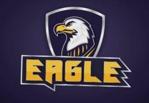 Draw a Eagle Logo Design in Adobe Illustrator