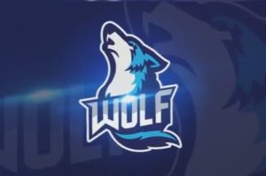 Draw a Wolf Logo Design in Adobe Photoshop