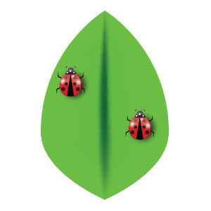 Cute Vector Ladybug Free download