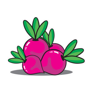 Turnip Vegetable Vector Flat design Free download