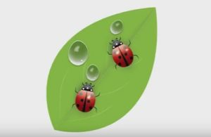 Draw a Vector Ladybug in Adobe Illustrator