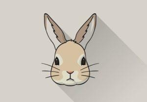 Draw a Vector Rabbit Icon in Adobe Illustrator