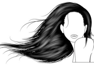 Draw a Vector Hair with Brushes in Illustrator