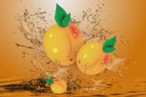 Draw a Vector Apricots in Adobe Illustrator CC