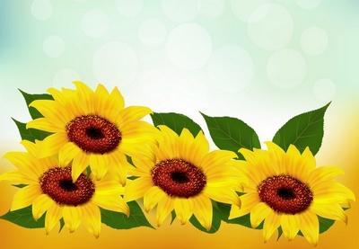 Draw a Gradient Mesh Sunflower in Illustrator