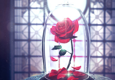 Create an Enchanted Rose in Adobe Photoshop