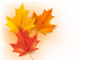 Draw a Autumn Background with Leaves in Illustrator