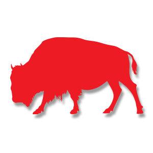 American Buffalo Silhouette Free Vector