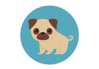Draw 10 Vector Mini Pug Illustrations in Illustrator