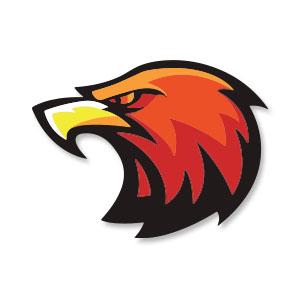 Eagle Head Logo Free Vector download