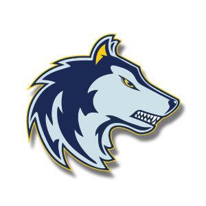 Wolf Sport Team Logo Vector