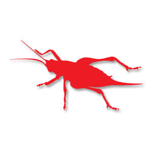 Cricket Insect Silhouette Free vector