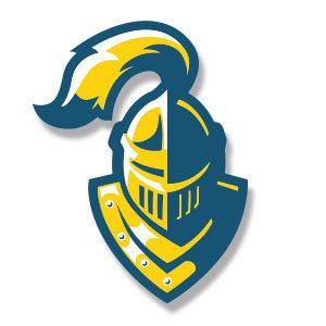 Knight Helmet Logo Vector