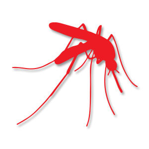 Mosquito Insect Silhouette Free Vector