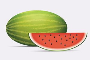 Draw a Realistic Watermelon in Adobe Illustrator