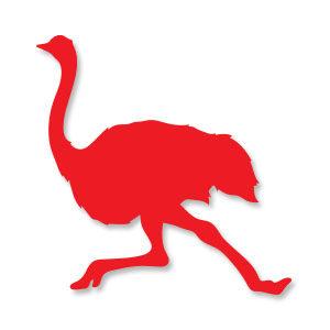 Ostrich Bird Silhouette Free Vector