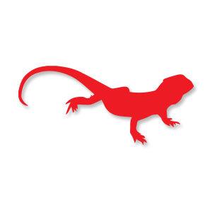Iguana Silhouette Free vector