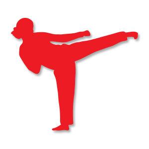 Karate Girl Sport Silhouette Free Vector