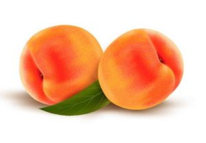 Draw Vector Peaches with Gradient Mesh in Illustrator