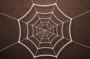 Create Web Spider Animation in After Effects