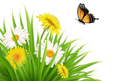 Draw a Nature Scene with Dandelions and a Butterfly in Illustrator