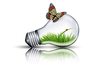 Draw an Eco Bulb and Butterfly in Adobe Illustrator
