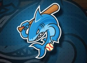 Draw a Baseball Shark Mascot Logo in Illustrator