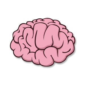Stylized Brain Free Vector